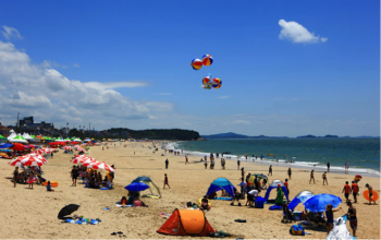 The Best Beaches in Korea