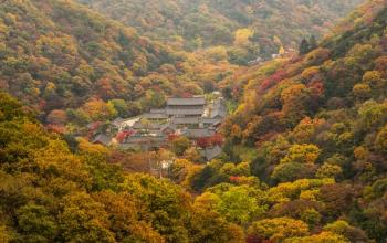 Essential Travel Tips & Guide | Korea Autumn Travel in 2016