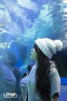 Busan Aquarium 부산 아쿠아리움