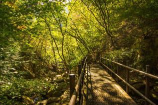 Garyeong Mountain bridge