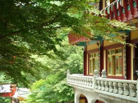 Treetop Balcony, Guinsa Temple