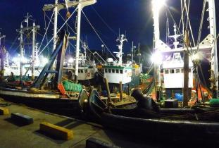 Mokpo Shipyard at Dawn