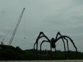 Seoul vs. Spider