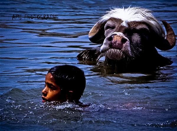 A glimpse inside India