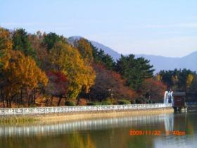 Yongi Lake